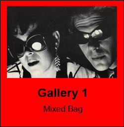 Gallery 1 - Mixed Bag